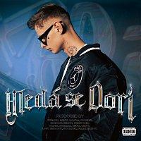 Dorian – Hledá se Dori