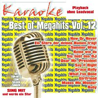 Karaokefun.cc VA – Best of Megahits Vol.12 - Karaoke
