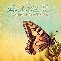 Různí interpreti – Awaken My Soul