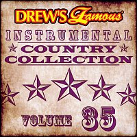 The Hit Crew – Drew's Famous Instrumental Country Collection [Vol. 35]