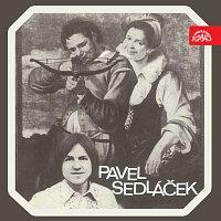 Pavel Sedláček – Pavel Sedláček