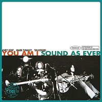 You Am I – Sound As Ever (Superunreal Edition)