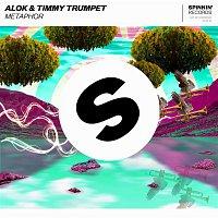 Alok & Timmy Trumpet – Metaphor