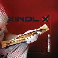 Xindl X – Návod ke čtení manuálu