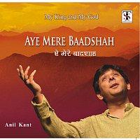 Anil Kant – aye mere baadshah