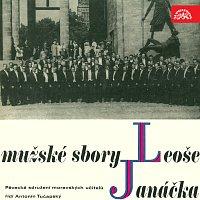 Přední strana obalu CD Janáček: Mužské sbory