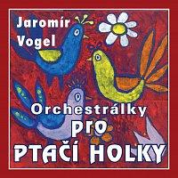 Vogel music orchestra – Orchestrálky pro ptačí holky