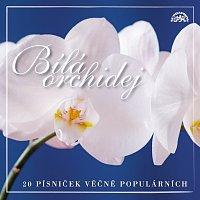 Přední strana obalu CD Bílá orchidej 20 písniček věčně populárních