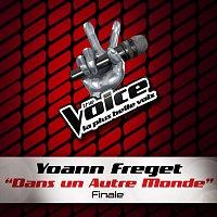 Yoann Freget – Dans Un Autre Monde - The Voice 2