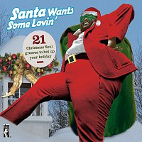 Různí interpreti – Santa Claus Wants Some Loving