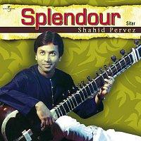 Ustad Shahid Parvez – Splendour