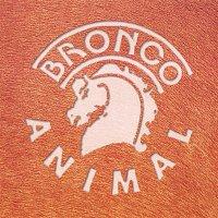 Bronco – Animal