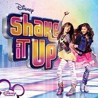 Různí interpreti – Shake It Up [Standard Digital]