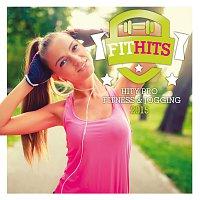 Různí interpreti – Fit Hits 2015