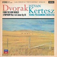 """Přední strana obalu CD Dvorak: Symphony """"From the New World"""""""