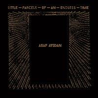 Asaf Avidan – Little Parcels Of An Endless Time