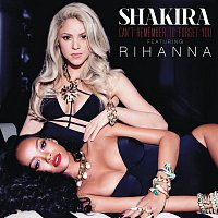 Shakira, Rihanna – Can't Remember to Forget You