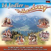 Diverse Interpreten – 14 Jodler im Polkaschwung