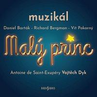 Různí interpreti – Malý princ. Muzikál CD