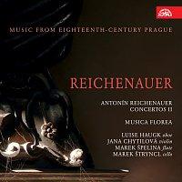 Přední strana obalu CD Reichenauer: Koncerty II. Hudba Prahy 18. století