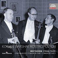Přední strana obalu CD Beethoven: Smyčcová tria. Russian Masters