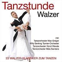 Různí interpreti – Tanzstunde Walzer