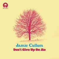 Jamie Cullum – Don't Give Up On Me
