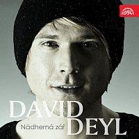 David Deyl – Nádherná zář