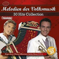 Various  Artists – 30 Hits Collection - Melodien der Volksmusik