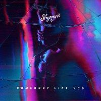 Sheppard – Somebody Like You