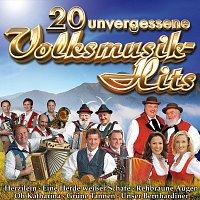 Různí interpreti – 20 unvergessliche Volksmusik-Hits