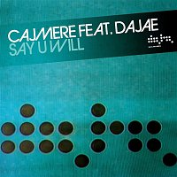Cajmere, Dajae – Say U Will (Remixes)