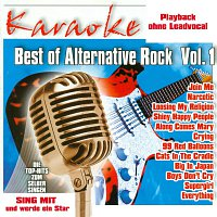 Karaokefun.cc VA – Best of Alternativ Rock Vol.1 - Karaoke