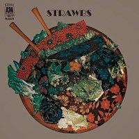 Přední strana obalu CD Strawbs