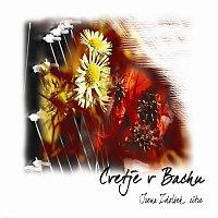 Irena Zdolšek – Cvetje v Bachu
