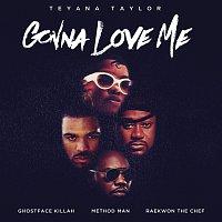 Přední strana obalu CD Gonna Love Me [Remix]