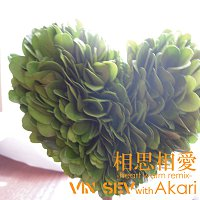 Vin Sev With Akari – Soushisouai -heart Warm Remix-