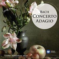 Andrei Gavrilov – Concerto Adagio: Bach