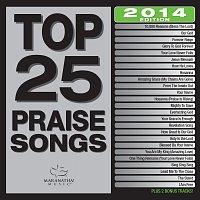 Různí interpreti – Top 25 Praise Songs [2014 Edition]