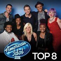 Různí interpreti – American Idol Top 8 Season 14