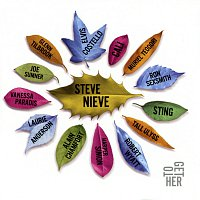Steve Nieve – ToGetHer
