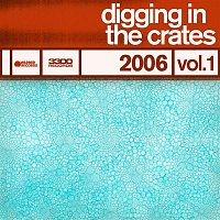 Jamie Kennedy, Stu Stone – Digging In The Crates: 2006 Vol. 1
