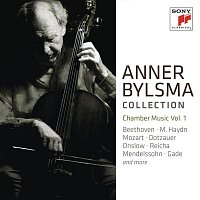 Anner Bylsma, Michael Haydn, L'Archibudelli – Anner Bylsma plays Chamber Music Vol. 1