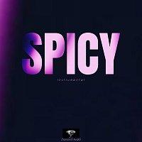 Diamond Audio – Spicy (Instrumental)