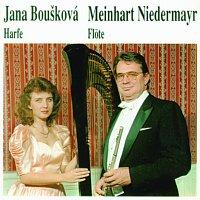 Meinhart Niedermayr – Harfe - Flote