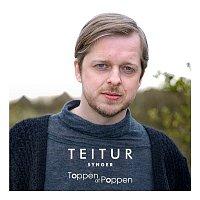 Teitur – Synger Toppen Af Poppen