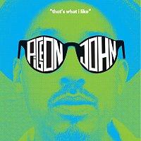 Pigeon John – That's What I Like