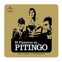 Pitingo – Flamenco es... Pitingo