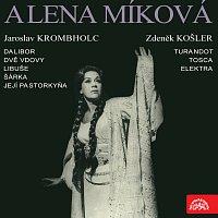 Alena Míková – Alena Míková - portrét sólistky