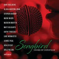 Různí interpreti – Songbird: Voices Of Christmas